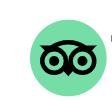 logo verde tripadvisor